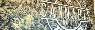 Cannabis Nation - Oregon City