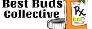 Best Buds Collective