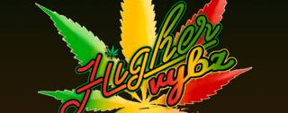Higher Vybz DC Marijuana Delivery