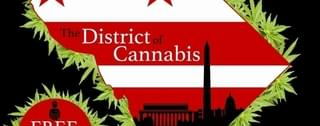 The District Of Cannabis washington DC Marijuana Delivery