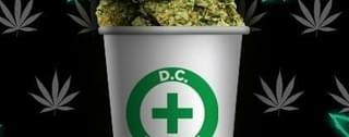 Hi-lifeDc DC Marijuana Delivery