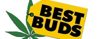 Best Buds DC DC Marijuana Delivery