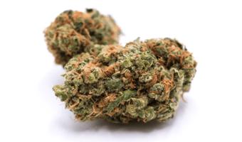 Diem Cannabis - Hellodiem.com