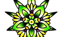 Flower Of Life Delivery