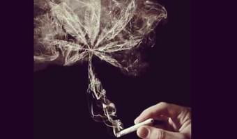 SmokingStoners