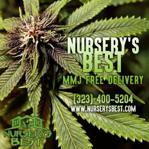 NURSERY'S BEST MMJ DELIVERY | Los Angeles County & Orange