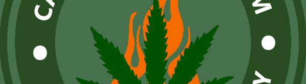 Cannabis On Fire