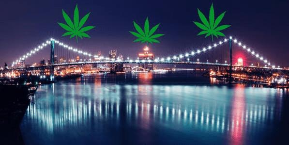 Ambassador Buds | Windsor Marijuana Delivery