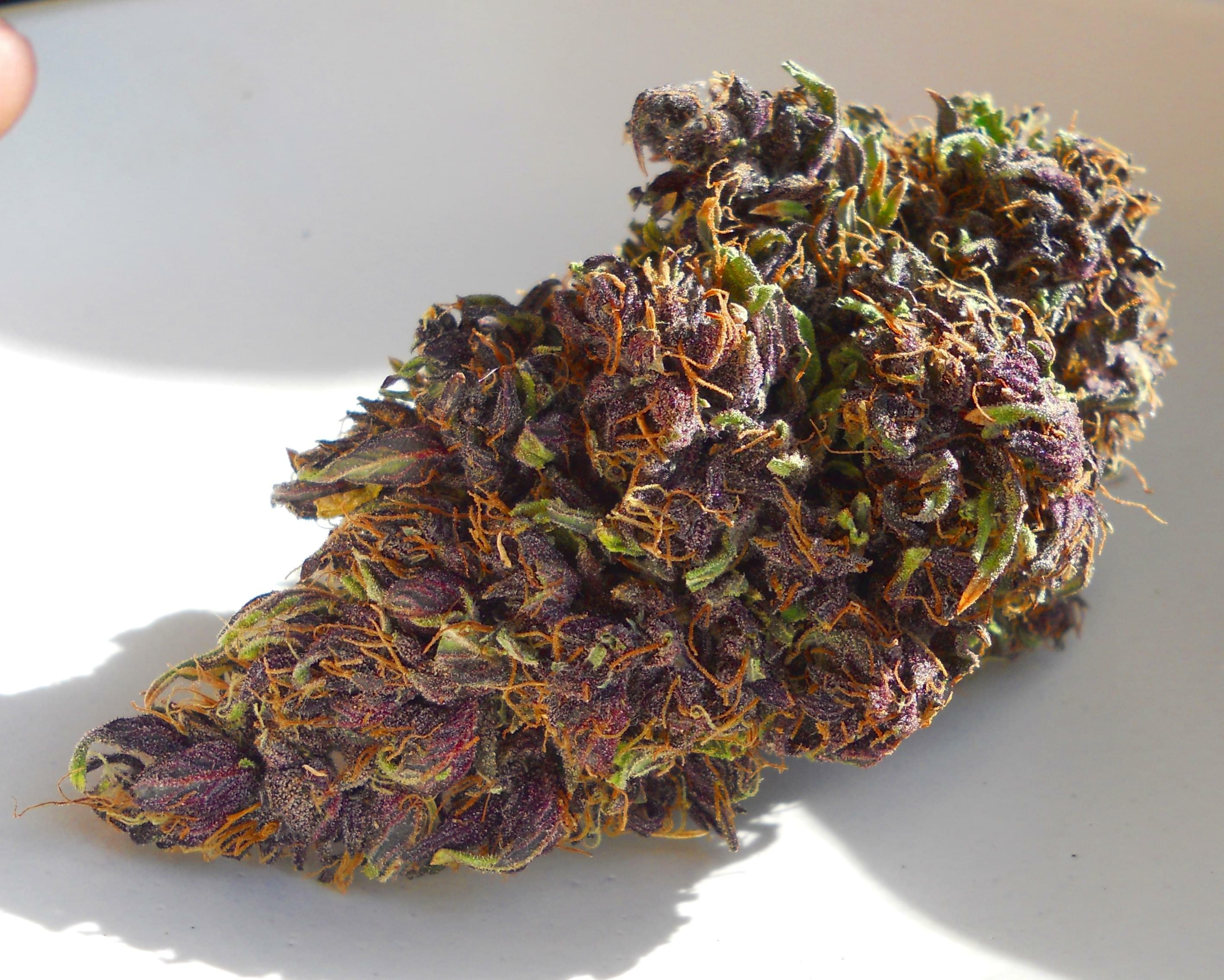 Organically Your S Photos Palmdale Marijuana Delivery