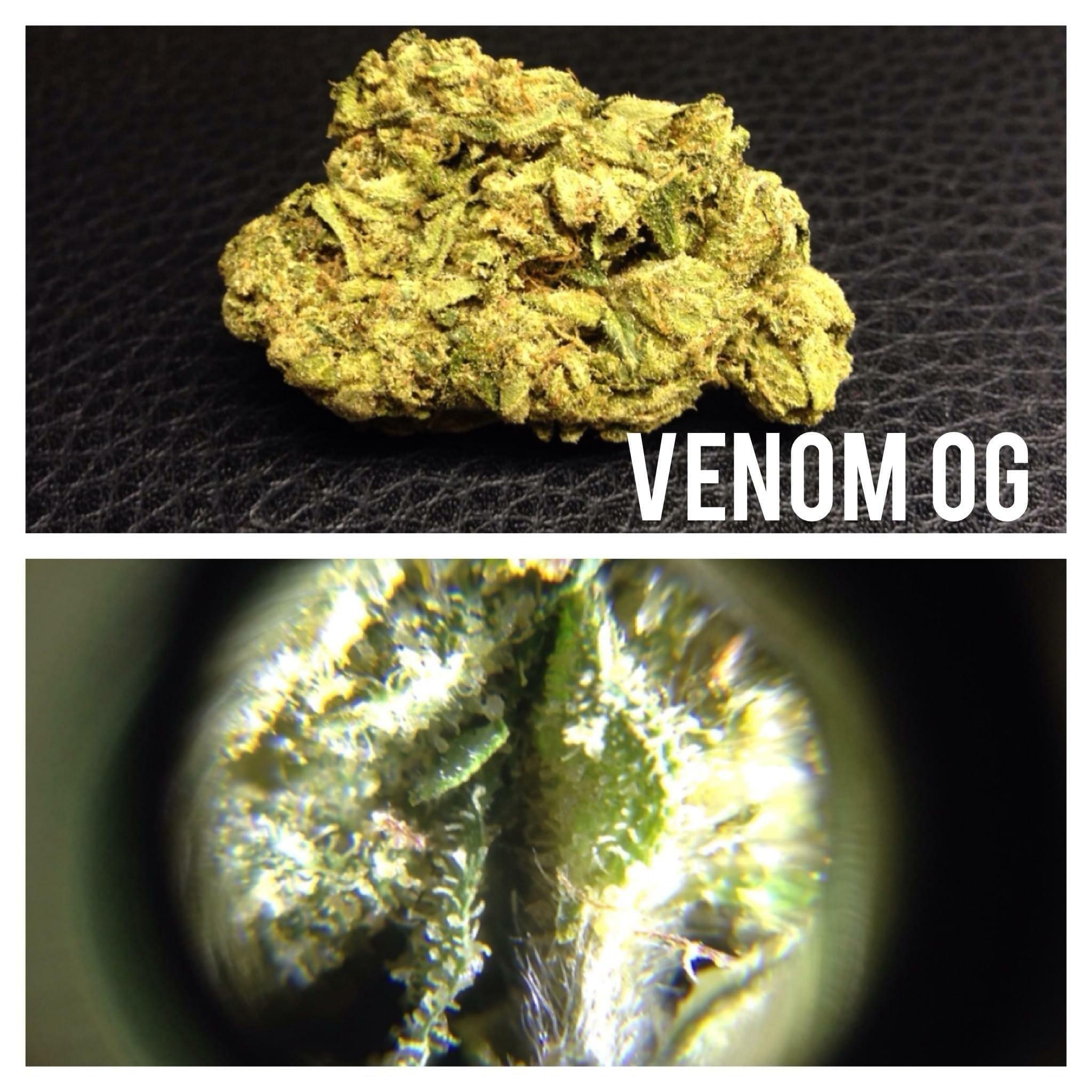 Cannabis Corona