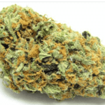 Green Crack from NURSERY'S BEST MMJ DELIVERY in Los Angeles County & Orange County
