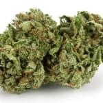 Og #18 from Bud Man - Premium Medical Marijuana Delivery in OC in Irvine