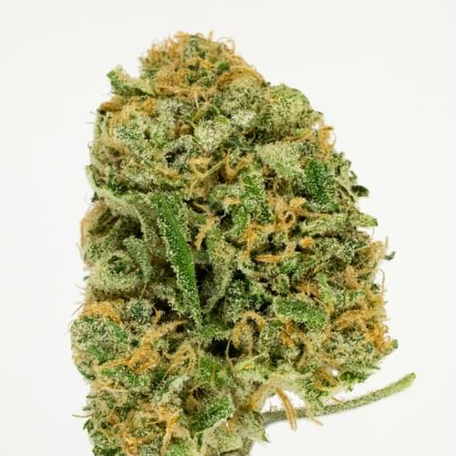Blue Dream Strain Information & Reviews | Where's Weed