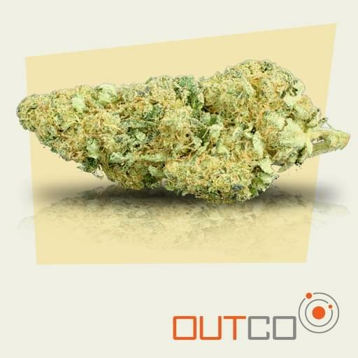 Electric Lemonade Strain Information & Reviews | Where's Weed